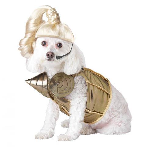 halloween dog costume market